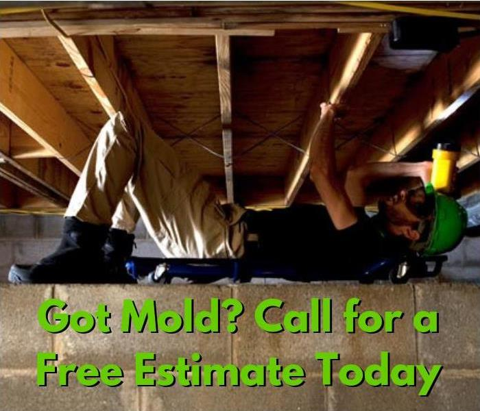 Mold Remediation Who Tests for Mold in Wayland, Mass.?