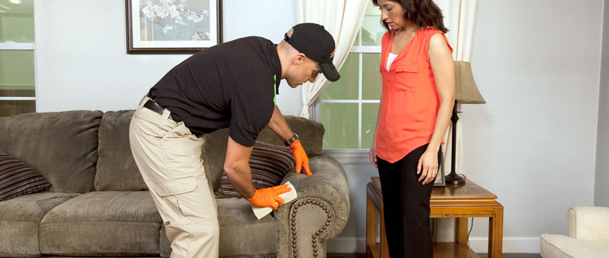 Waltham, MA carpet upholstery cleaning