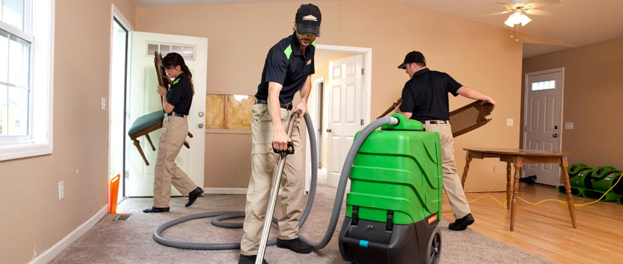 Waltham, MA cleaning services